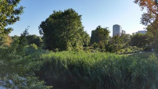 Boston, summer, Sunday, Fenway, Fens, Gardens