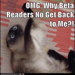 beta reader, kitty, S.A. Young