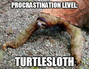 Turtlesloth, Scarlett O'Hara, S.A. Young, procrastination, meme
