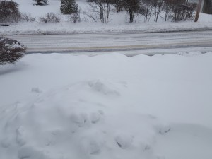 snow, storm, Orson, Niko, Monday, S. A. Young