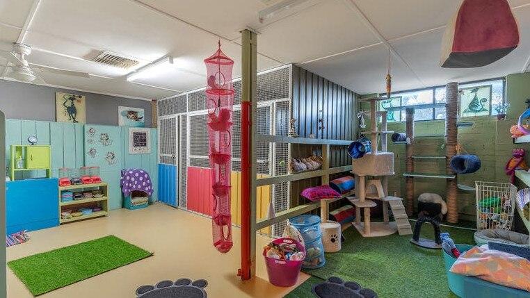 Lewiston eigendom wordt geleverd met hondenpension kennels en een cattery