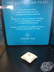 The largest pearl at Cygnet Bay Pearl Showroom