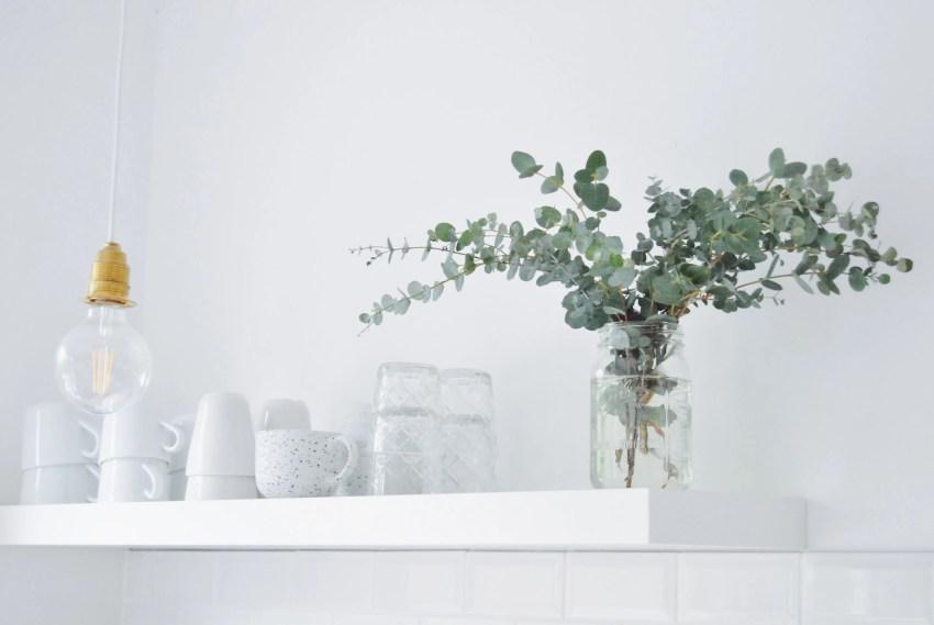 Eukalyptus, eucalyptus, white kitchen
