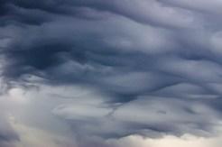 Storm-9898
