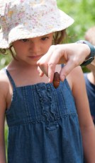 Enchanted by a pupae!