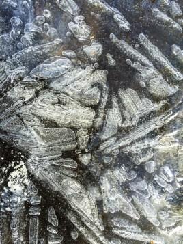 Ice-2398