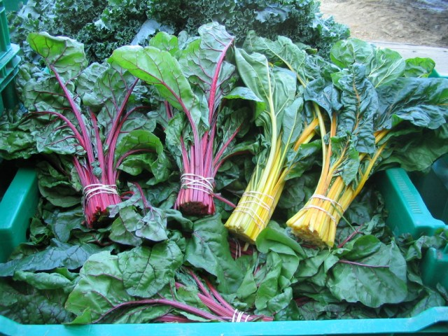 Ruby and Golden Chard
