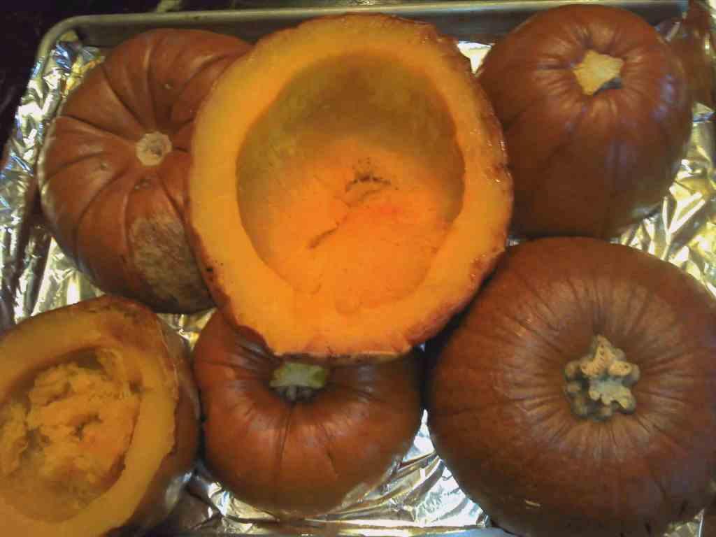 sugar pumpkin baked