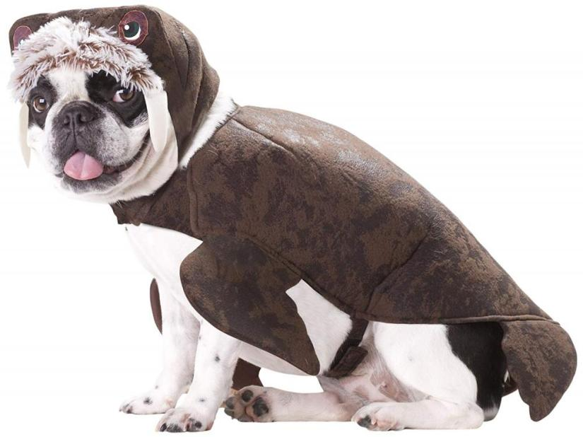 Crafts for Dogs Walrus Costume