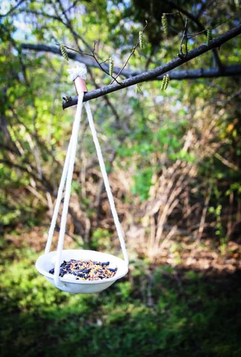 bird feeders designs