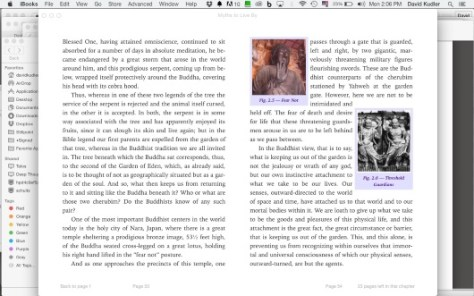 iBooks example
