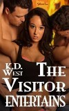 The VIsitor Entertains cover - Stillpoint/Eros