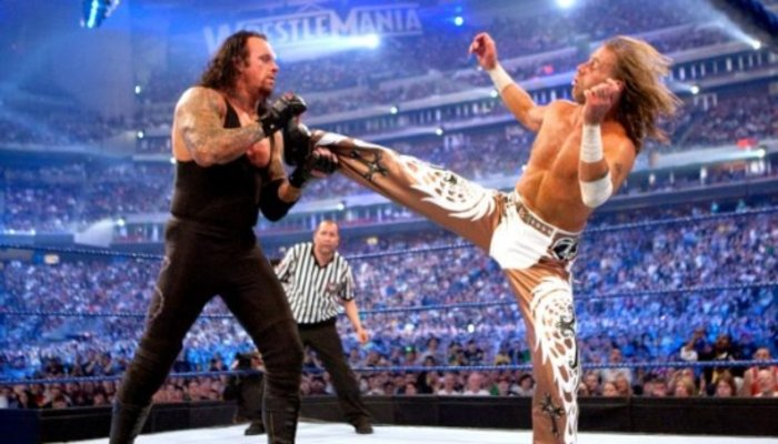 Image result for wrestlemania 25  undertaker