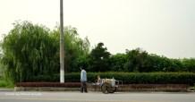 Who needs a stroller?