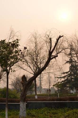 This photo was taken at 2:22 PM on the left side of the lake. The sun is trying to break through; however, the smog prevents the sun from shining.