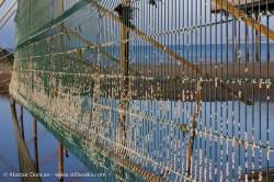 Colwyn Bay fence