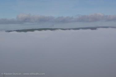 field of fog