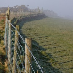 fence perspective