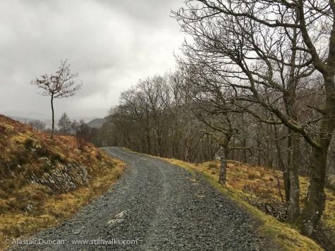 Lledr Valley Footpath