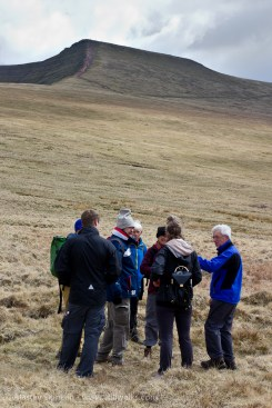 walkers and Corn Du