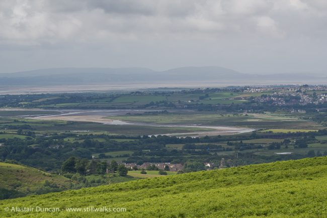 Loughor Estuary from Cefn Drum
