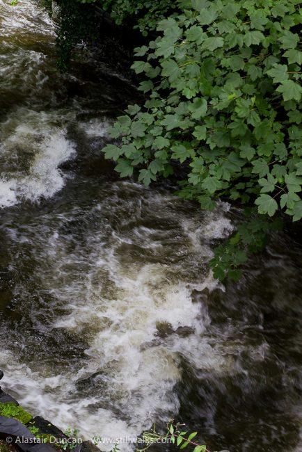Afon Deri