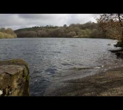 Reservoir Walk Spring Sample
