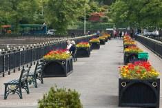 Roath Park, Cardiff