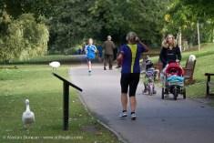 walkers, joggers and pram pushers