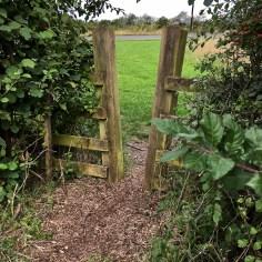 woodland exit
