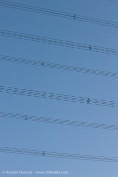 Electricity pylon lines
