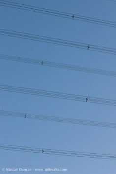 Electricity pylon lines