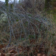 abandoned wire fence roll