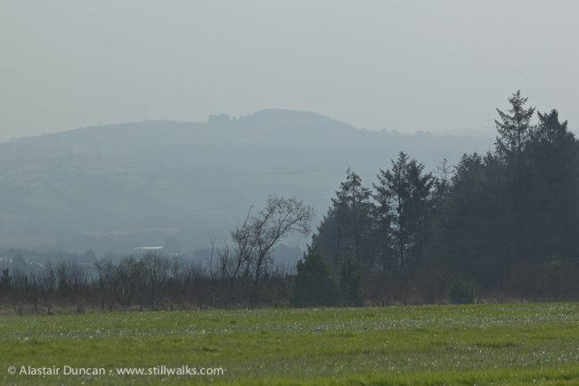 view south from Llyn Llech Owain