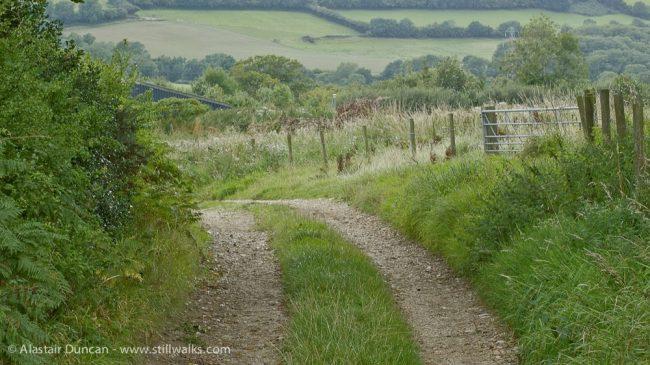 Dorset walk