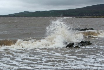 tidal splash
