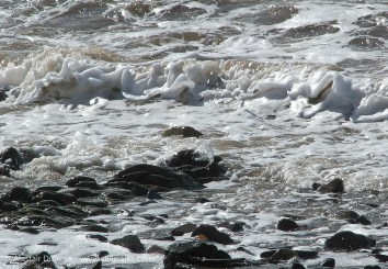 sea foam and stone