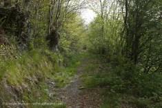 old roman road