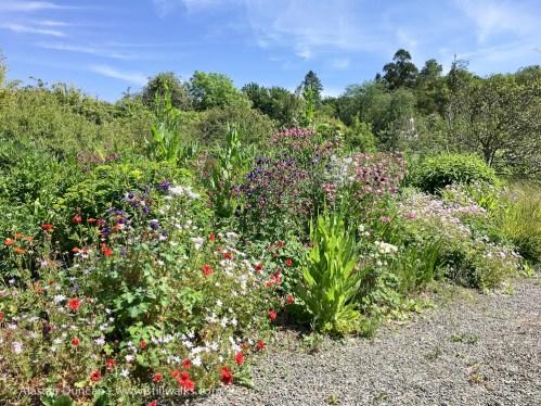 Cally Gardens