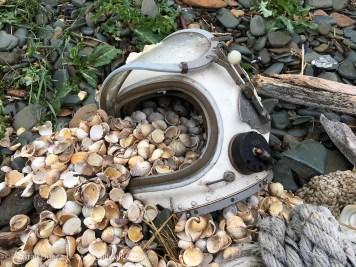diving helmet and shells