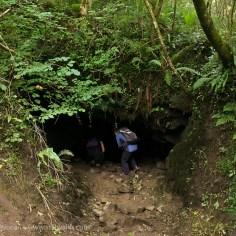 Guzzle Hole