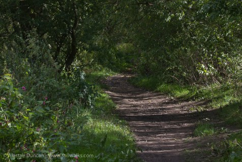 River Ouse footpath