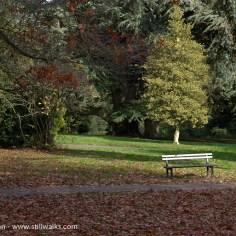 Stratford Park - Stroud