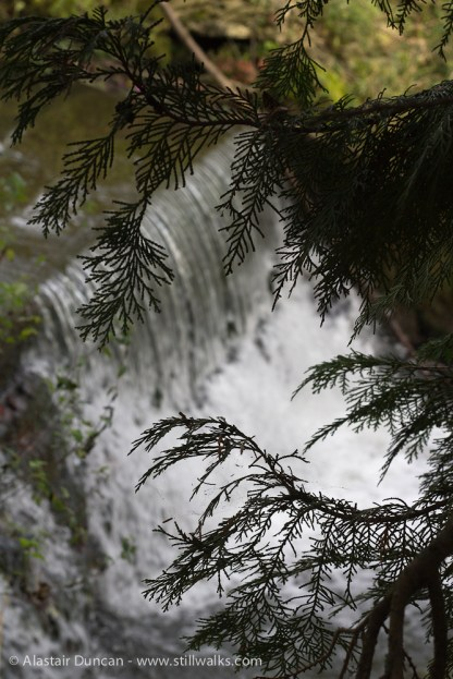 Stratford Park - falling water