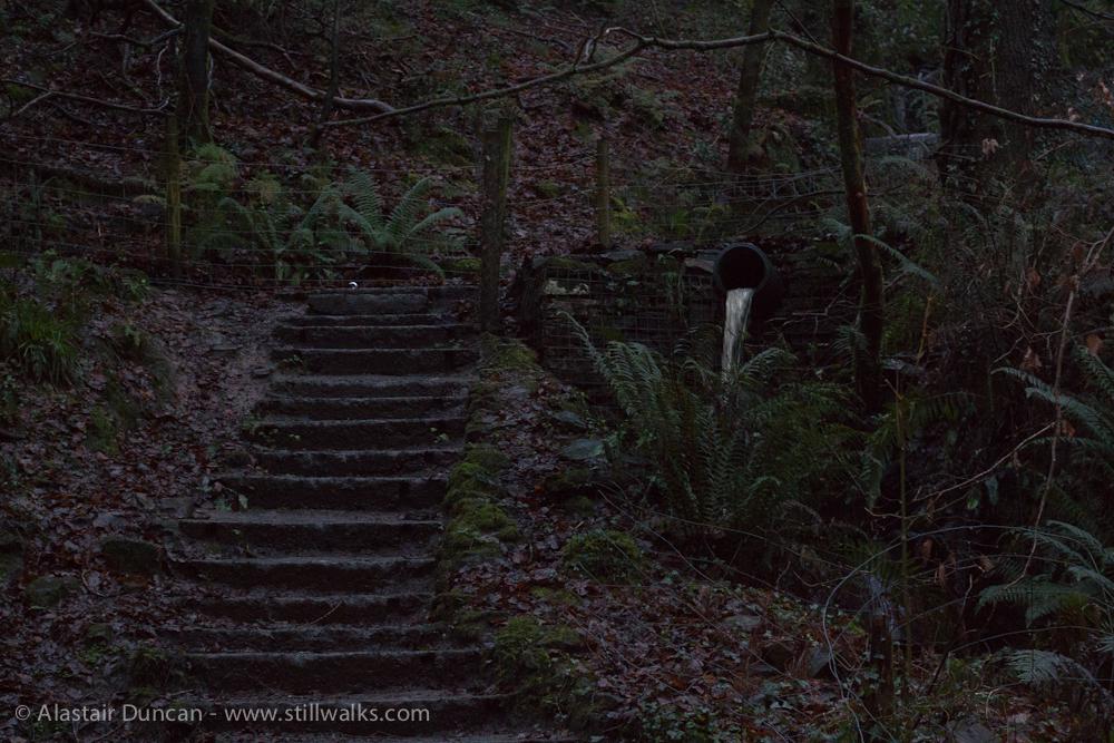 Dark steps