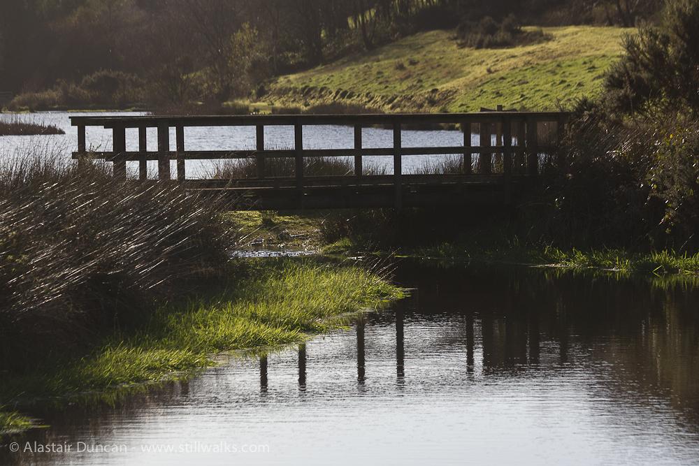 Waterside footbridge