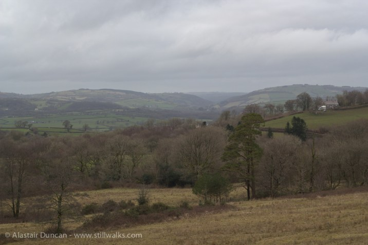 NBGW Landscape 2