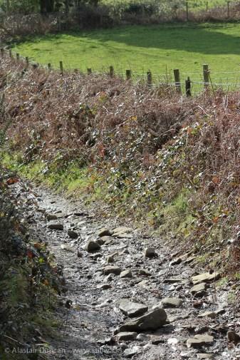 Mynydd Gelli footpath