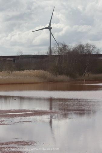 Industrial wetland