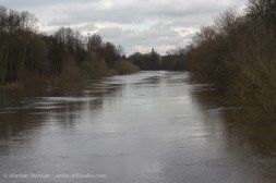 River Ouse in Flood